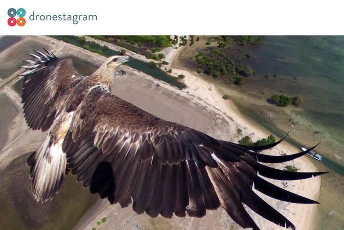 designnews-dronestragram