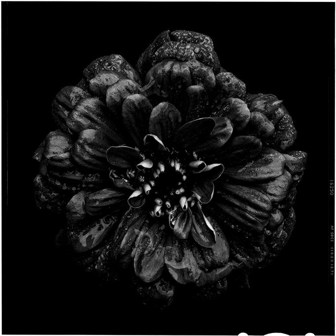 blacktoblack-3