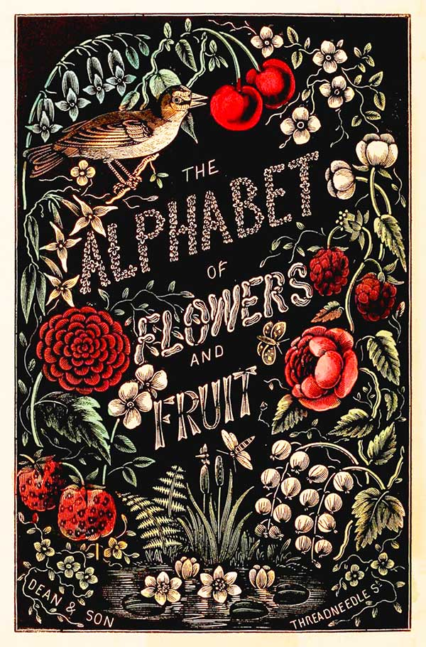 The Alphabet of Flowers and Fruit