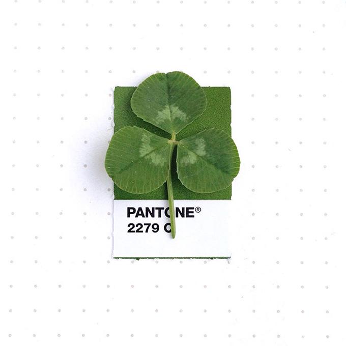 pantone-matching-system-everyday-objects-tiny-pms-project-inka-mathews-houston-texas-1-(1)