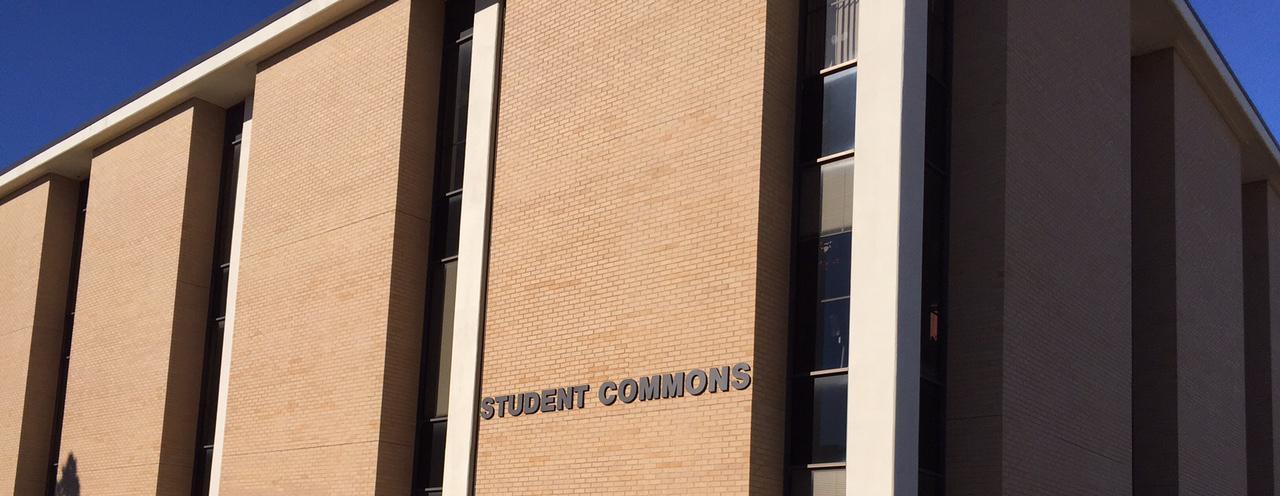 _commons