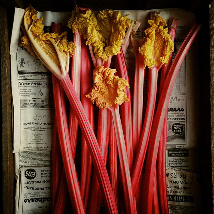iphone photography winners - andrew montgomery - food