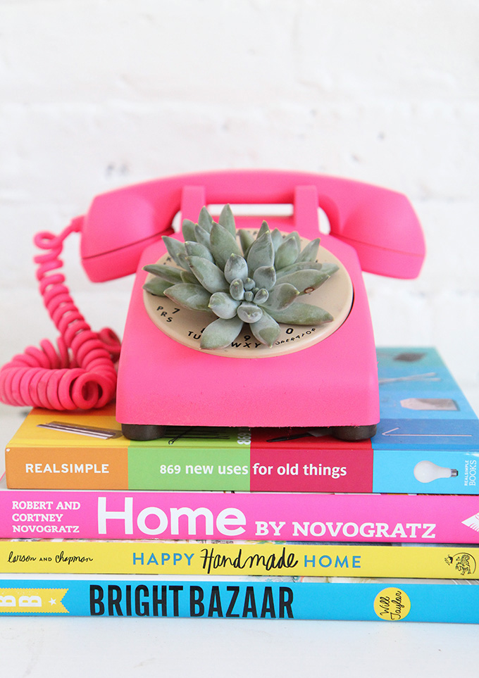 Office-Ideas-DIY-Succulent-Phone