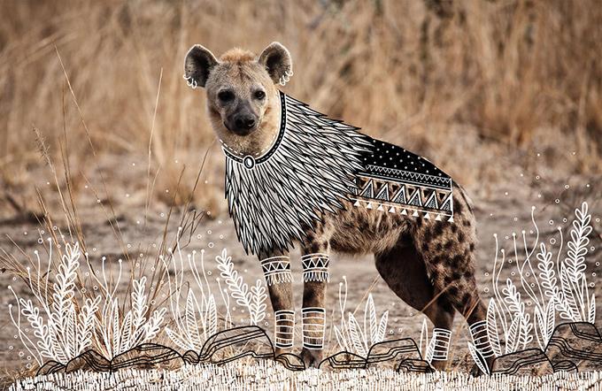 illustrated hyena