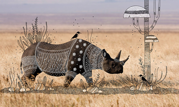 illustrated rhino