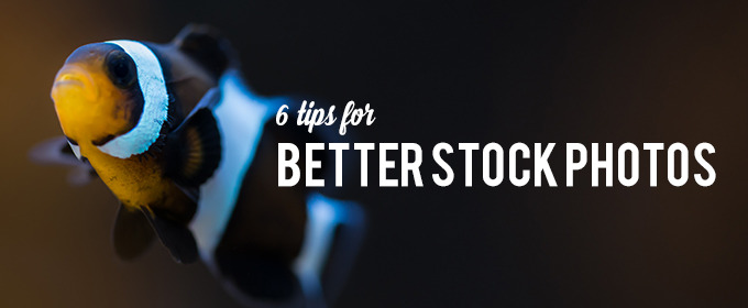 6 Tips for Better Stock Photos