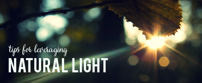 Tips For Leveraging Natural Light in Your Photography