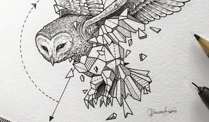 Artist Creates Extraordinary Geometric Animal Illustrations ...