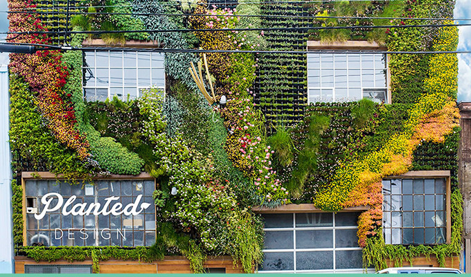 10 Stunning Green Walls That Make A Space Come Alive