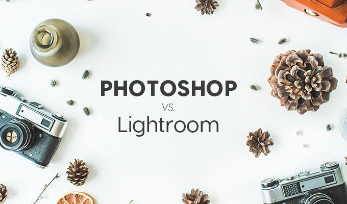 What's The Difference Between Photoshop and Lightroom?