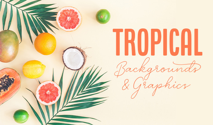Tropical Backgrounds and Graphics that Bring Exotic Designs to Life