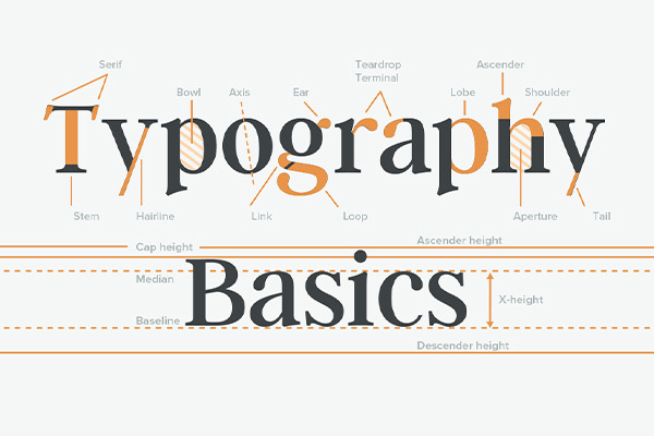 Free Typography Basics Cheatsheet: Anatomy, Classification & Specia...
