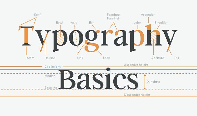 Free Typography Basics Cheatsheet: Anatomy, Classification & Special Terms