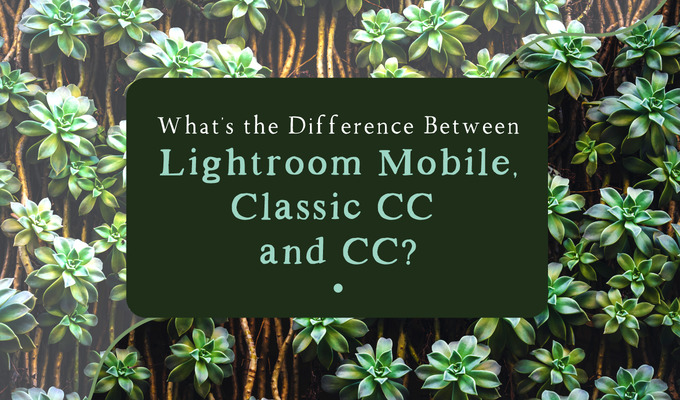 What's the Difference Between Lightroom Mobile, Classic CC and CC?